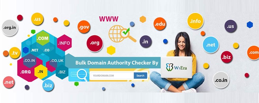 Service Provider of Bulk Domain Name Transfer