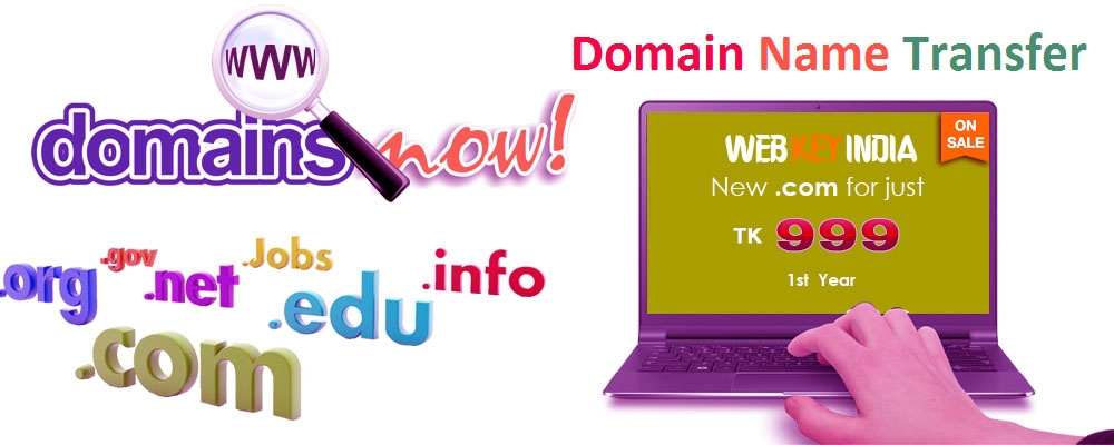 Service Provider of Domain Name Transfer