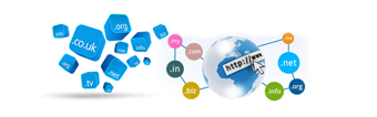Service Provider of Domain Registration Services