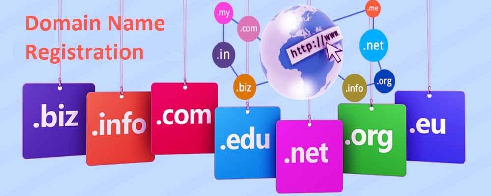 Service Provider of Domain Name Registration