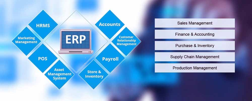 Service Provider of ERP Software Development