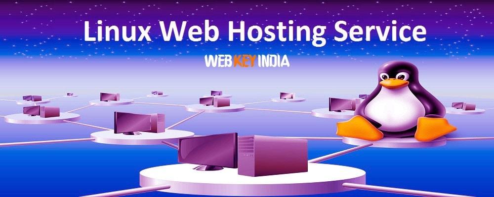 Service Provider of Linux Web Hosting Service