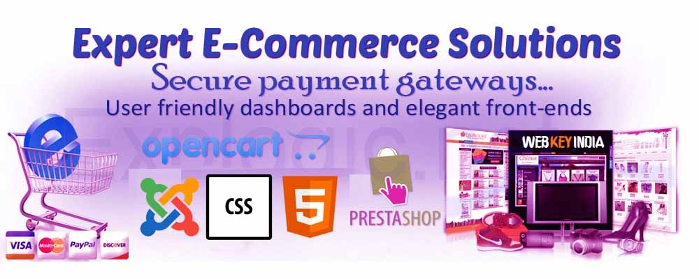 Service Provider of PHP Ecommerce Web Development
