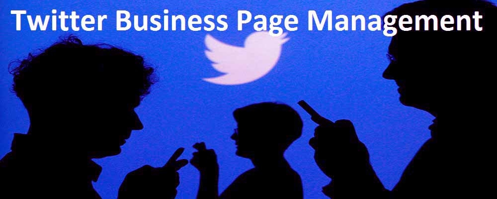 Service Provider of Twitter Business Page Management