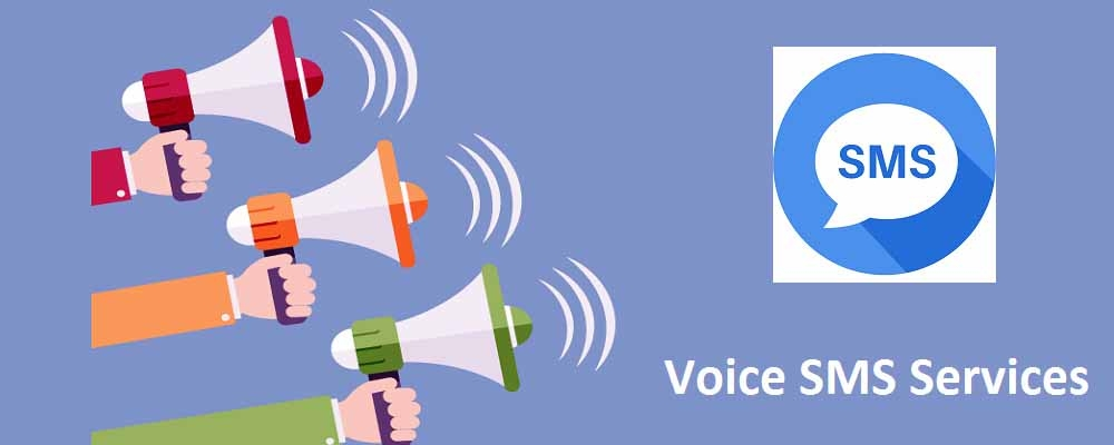 Service Provider of Voice SMS Services