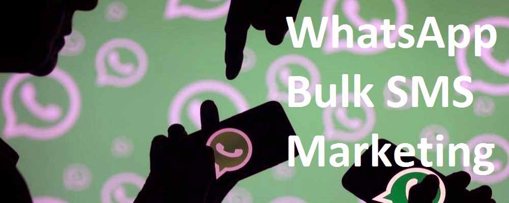 Service Provider of WhatsApp Bulk SMS Marketing